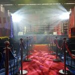 Professional boxing lighting & entrance