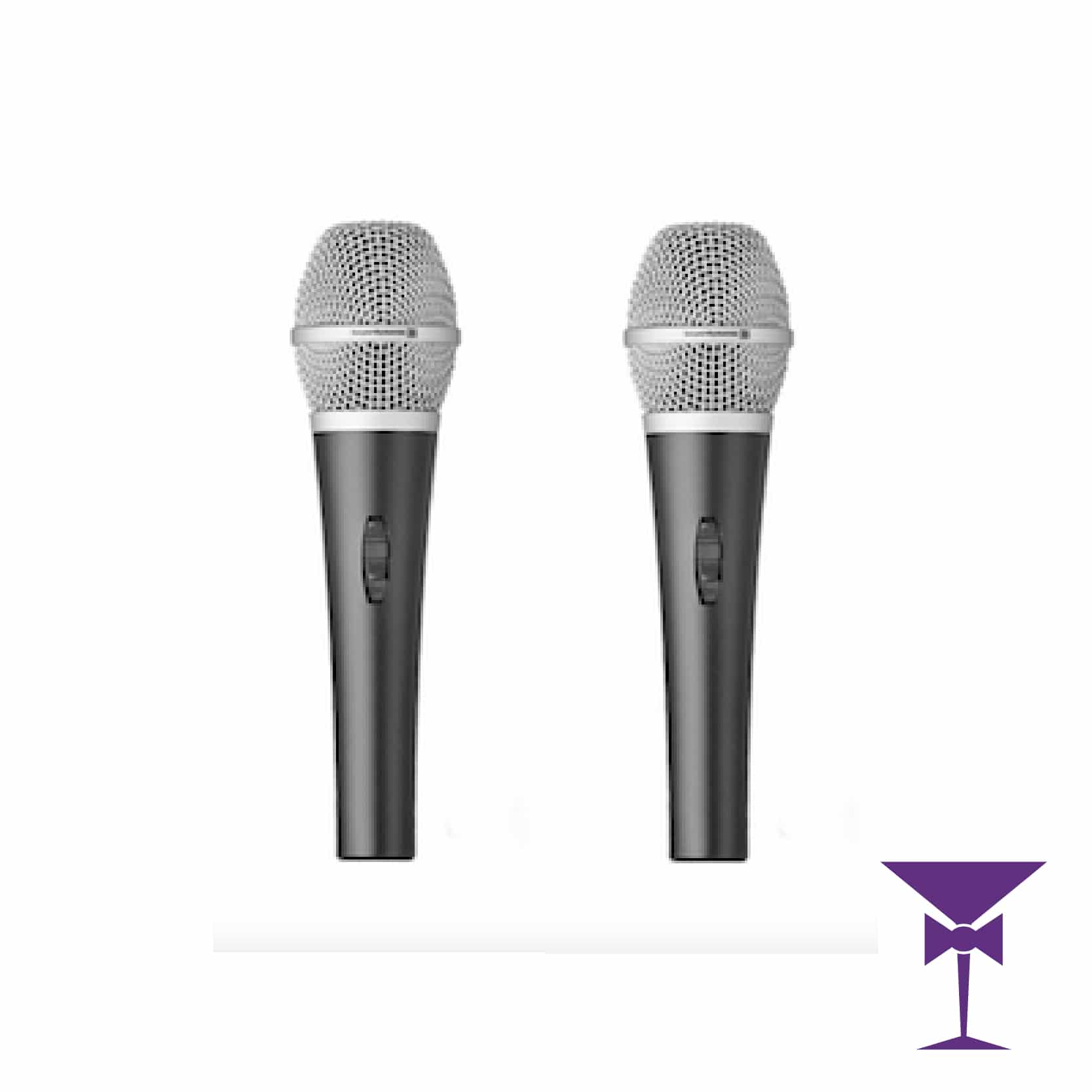 Dual Microphones Included in our Large Sound Package