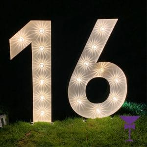 Giant light up number 16 for hire in Surrey, Sussex & Kent.