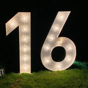 Light up number 16 hire