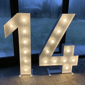 Light up number 14 for hire